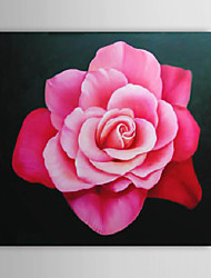 Hand Painted Oil Painting Floral Pink Rose with Stretched Frame