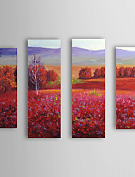 Hand Painted Oil Painting Landscape Red Field with Stretched Frame Set of 4