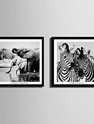 Hayvanlı Kanvas v rámu / Set v rámu Wall Art,PVC Materiál Černá Včetně pasparty s rámem For Home dekorace rám Art