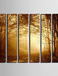 plátno Set Krajina evropský styl,Více než pět panelů Plátno Vertikálně Tisk Art Wall Decor For Home dekorace