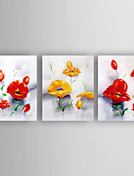 Hand-Painted Flowers Set of 3 Canvas Oil Painting With Stretcher For Home Decoration Ready to Hang