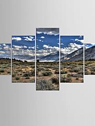 Tirages Photographique Paysage Moderne Réalisme,Cinq Panneaux Toile Toute Forme Imprimer Art Décoration murale For Décoration d'intérieur