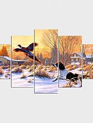 Pingoitetut kanvasprintit Eläin Moderni,5 paneeli Kanvas Mikä tahansa muoto Tulosta Art Wall Decor For Kodinsisustus