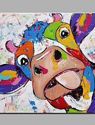 Pintados à mão Animal Quadrangular,Moderno 1 Painel Tela Pintura a Óleo For Decoração para casa