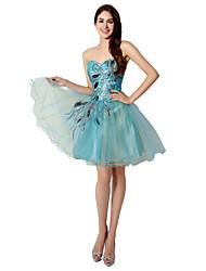 מסיבת קוקטייל שמלה נשף מחשוף לב קצר \ מיני טול עם ריקמה
