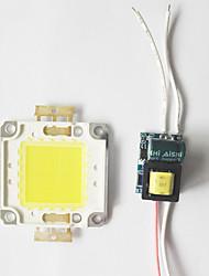 8w cob led diy čip deska panelu korálek s vedeným napájecím ovladačem