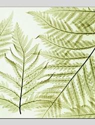 Pintados à mão Floral/Botânico Quadrangular,Moderno Clássico 1 Painel Tela Pintura a Óleo For Decoração para casa
