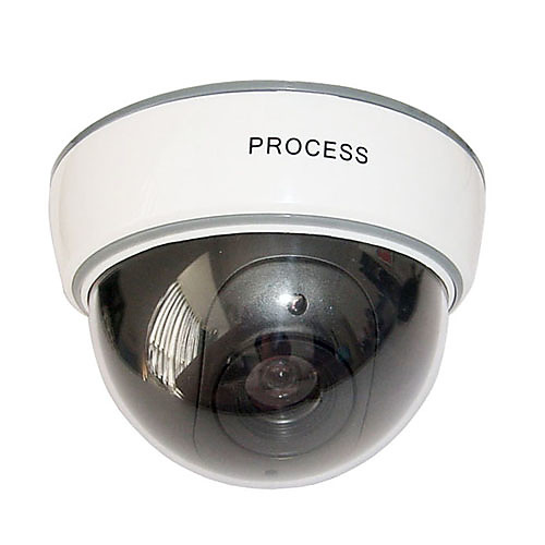 манекен купольная камера безопасности с мигающими красными привело Lightinthebox 308.000