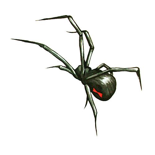 5 шт паук водонепроницаемый временную татуировку (6м  6 см) Lightinthebox 192.000