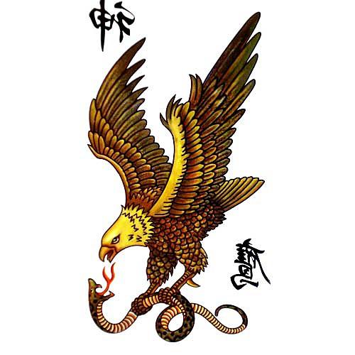 5 шт ястреб водонепроницаемый временную татуировку (17,5 см  10 см) Lightinthebox 214.000