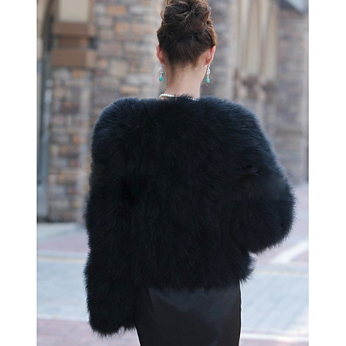 Великолепная с длинным рукавом без воротника мехом страуса Casual / Партия куртки Lightinthebox 5156.000