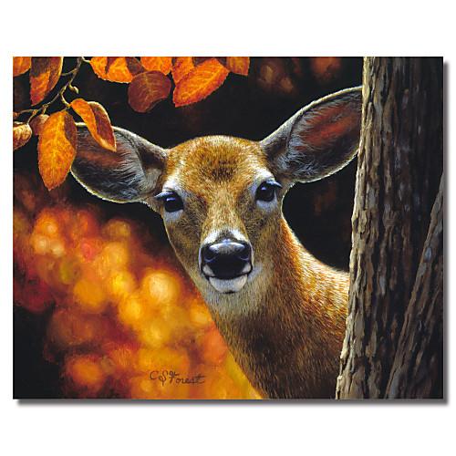 канва животных искусства врасплох Криста лесу с растянутыми кадра Lightinthebox 858.000