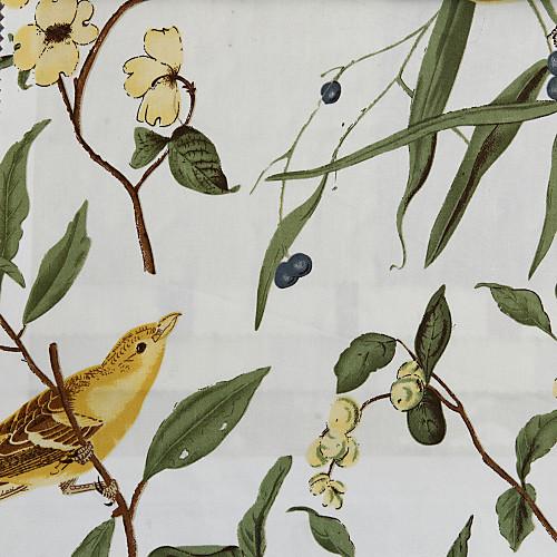 утром птицы красочные тени римских Lightinthebox 2148.000