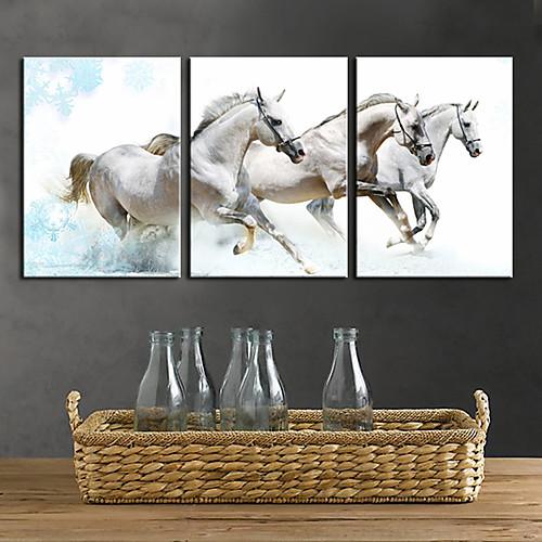 Натянутым холстом печати искусства животными White Horses Lightinthebox 2792.000