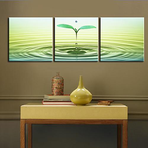 Натянутым холстом печати искусств Ботанический Спраут Набор из 3 Lightinthebox 3007.000