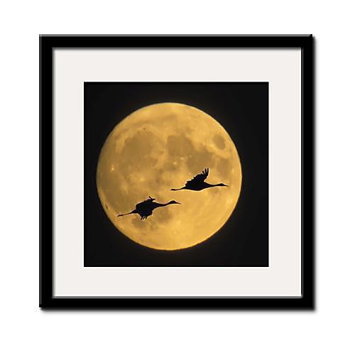 You And Me в лунном свете Пейзаж подставил Печать холст Lightinthebox 1847.000