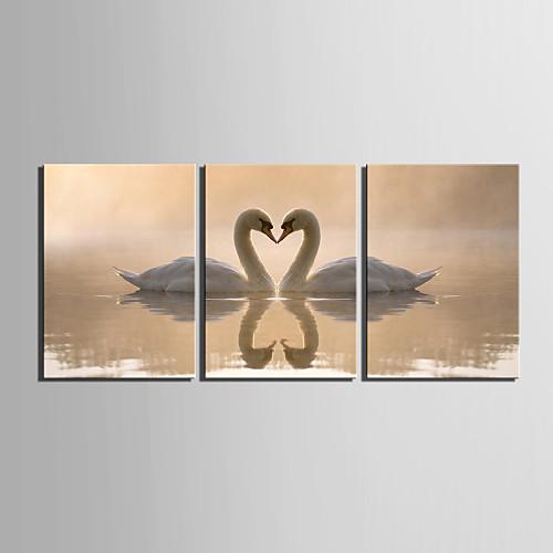 Картина-принт, мотив влюбленные лебеди, 3шт Lightinthebox 2577.000