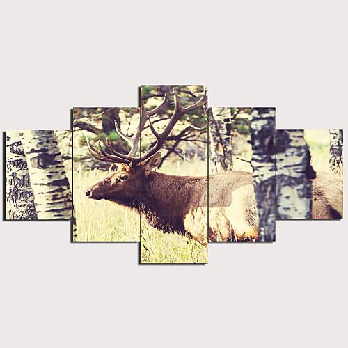 С картинкой Отпечатки на холсте - Пейзаж Традиционный Modern 5 панелей Репродукции