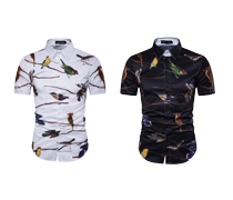 Summer Men's Shirts Great Sale