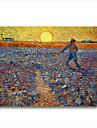 handmålade oljemålning såningsmannen, ca 1888 av Vincent van Gogh med sträckt ram