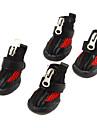 Chien Chaussures & Bottes Noir Printemps/Automne CuirChien Chaussures