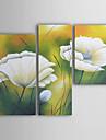 met de hand geschilderde bloemen olieverfschilderij met gestrekte frame - set van 3
