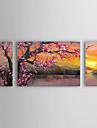 HANDMÅLAD Blommig/Botanisk Horisontell Panorama,Klassisk Traditionellt Tre paneler Kanvas Hang målad oljemålning For Hem-dekoration
