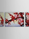 oljemålning blommig plommon blommor set om 3 med sträckt ram 1307-fl0154 handmålade duk