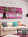 Sträckta kanvas botanik Spring Pink Tree Set om 3