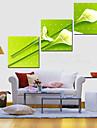 Sträckta kanvas botanik Flying Tuplips Set av 3