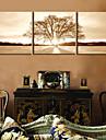 toile set Paysage / A fleurs/Botanique Modern / Classique,Trois Panneaux Toile Horizontale Imprimer Art Décoration murale For Décoration