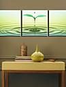 Toiles tendues Art botanique Sprout Ensemble de 3