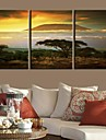 Stretched Canvas Art Landskap Kilimanjaro Mountain Set med 3