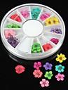 36st 12 färger naturligt torkade blommor hjul nail art dekoration