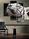 toile tendue tigre blanc décoration ensemble de 4