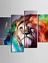 Toiles tendues Art Lion Animal Set de 4