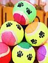 Katter / Hundar Husdjursleksaker Boll Tennisboll Slumpmässig färg Svamp