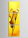 Sträckta canvas konst Blommor gula liljor Set av 3