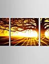 Toiles Tendues Paysage Classique Moderne Style européen Traditionnel,Trois Panneaux Horizontale Imprimer Art Décoration murale For