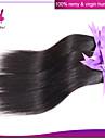 peruanska jungfru hår rakt billig peruanska rakt hår 3Bundles / lot människohår väva