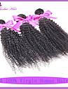 péruviens crépus bouclés faisceaux de cheveux vierges traitent cheveux bouclés profonde cheveux péruvien 7a non transformés afro crépus