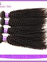7a billiga brasilianska kinky lockigt jungfru hår 4st brasiliansk kinky lockigt mänsklig kinky lockigt till salu