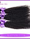 kinky lockigt jungfru hår malaysian lockigt jungfru hår 3 st malaysiska kinky lockigt hår 7a obearbetade jungfru hårknippena