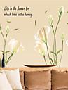 Botanique Romance Nature morte Mode Floral Paysage Fantaisie Stickers muraux Stickers avion Stickers muraux décoratifs, Papier Matériel
