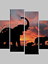 Toiles Tendues Art éléphants animal set de 4