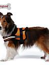 Hundar Selar Reflekterande Andningsfunktion Solid Röd Svart Orange Nylon Nät
