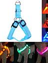 Chat / Chien Harnais Lampe LED / Ajustable/Réglable Solide Rouge / Vert / Bleu / Incanardin / Jaune / Orange Nylon