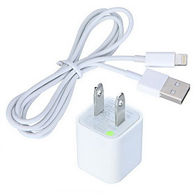 AC Charger with 8 Pin USB Cable (100cm) for iPhone 6 iPhone 6 Plus