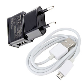 Euro Plug Micro USB Wall Charger for Samsung Galaxy S3/S4 and Other Cellphones