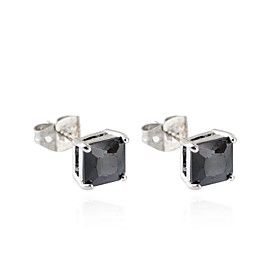 Woman's New Fashion Simple Elegant Two Color Zircon Earring ERZ0147